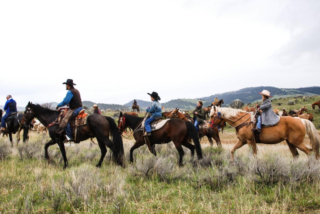 Gardiner Horse Drive, Montana